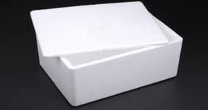 Tempex Thermo Box Groot met 4 Cool packs-0