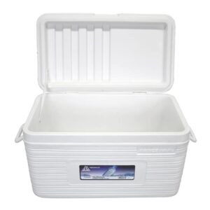 Koelbox - 52 liter